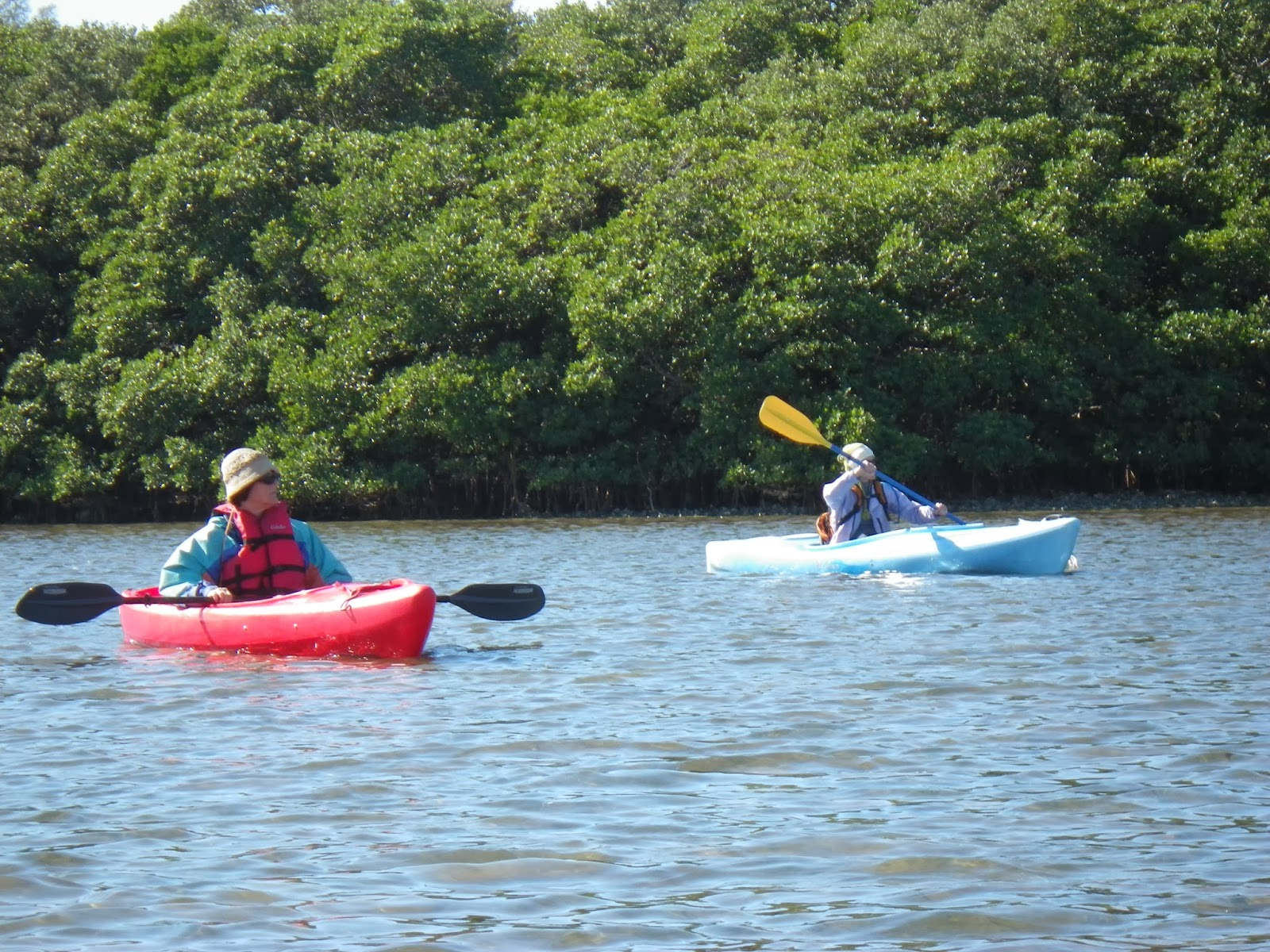 Doing it on the roadpart ii december 2013 a day of kayaking at fort desoto nvjuhfo Image collections