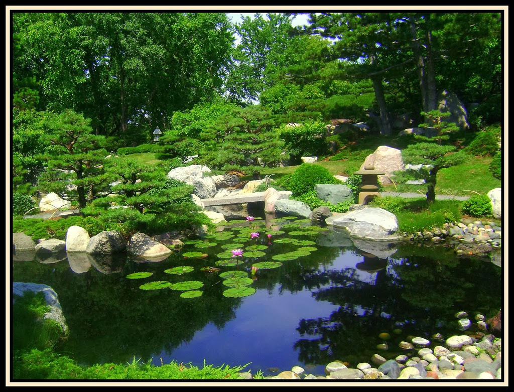 Random thoughts memories of japan the tea ceremony for Outer garden
