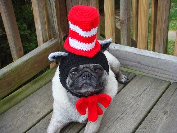 Pug With Head Costume