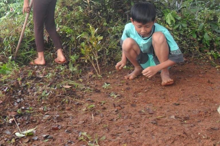 Mengenal Sifat-sifat Fisik Tanah