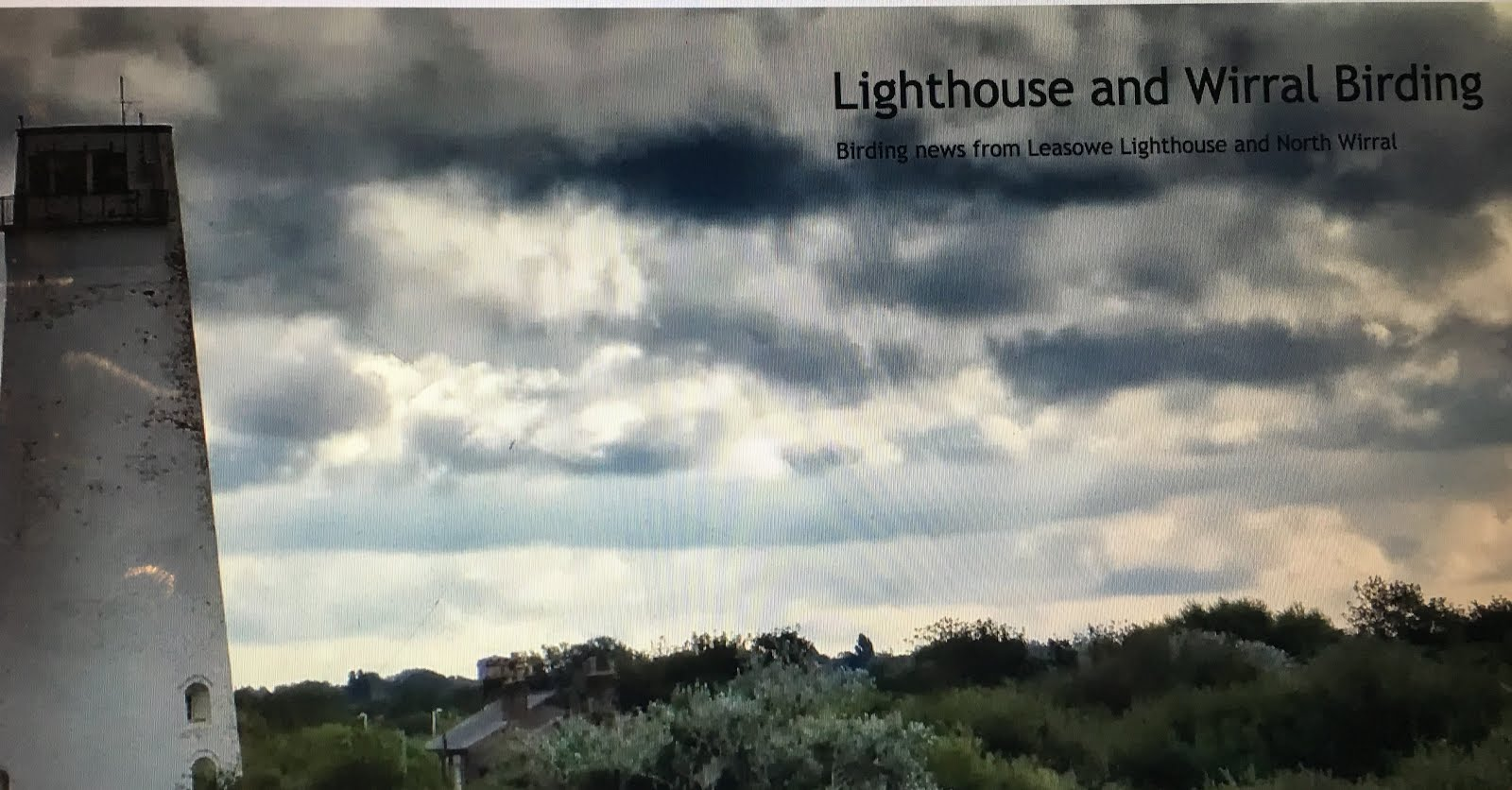 LIGHTHOUSE AND WIRRAL BIRDING