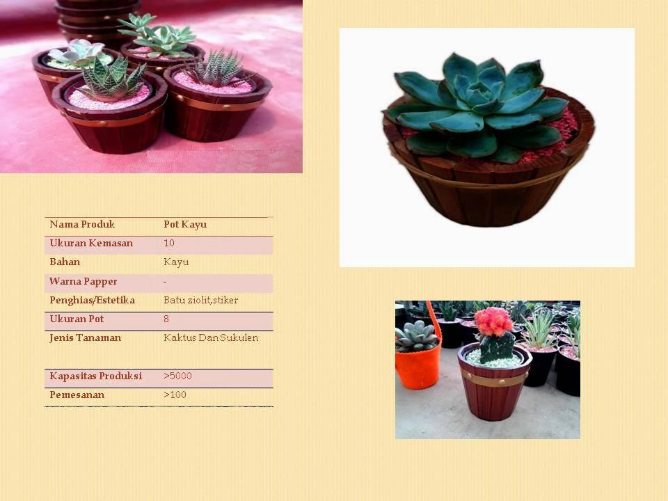 Pot Tanaman HIas Exklusive, Souvenir tanaman, souvenir hijau, Gogreensouvenir, Souvenir bibit tanaman lembang