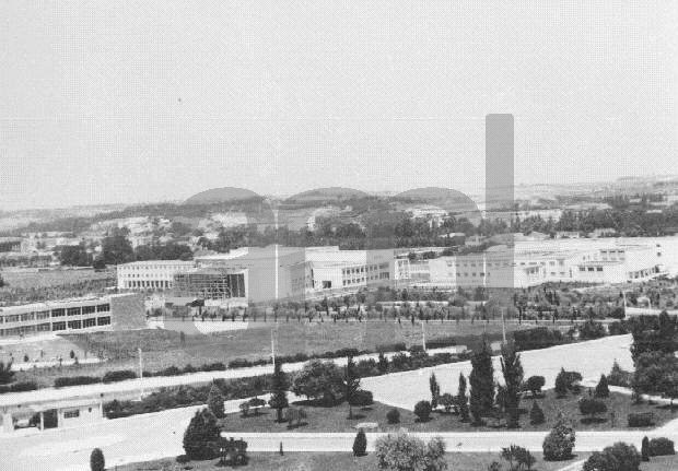 terraco jardins clinica:Bairro da Quinta da Calçada: O Estádio Universitário, o CDUL e a