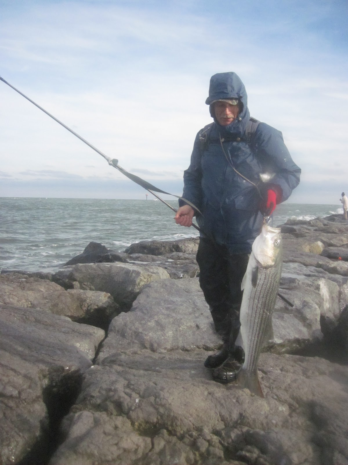 New jersey fishing report fishing new jersey nj for Fishing report nj