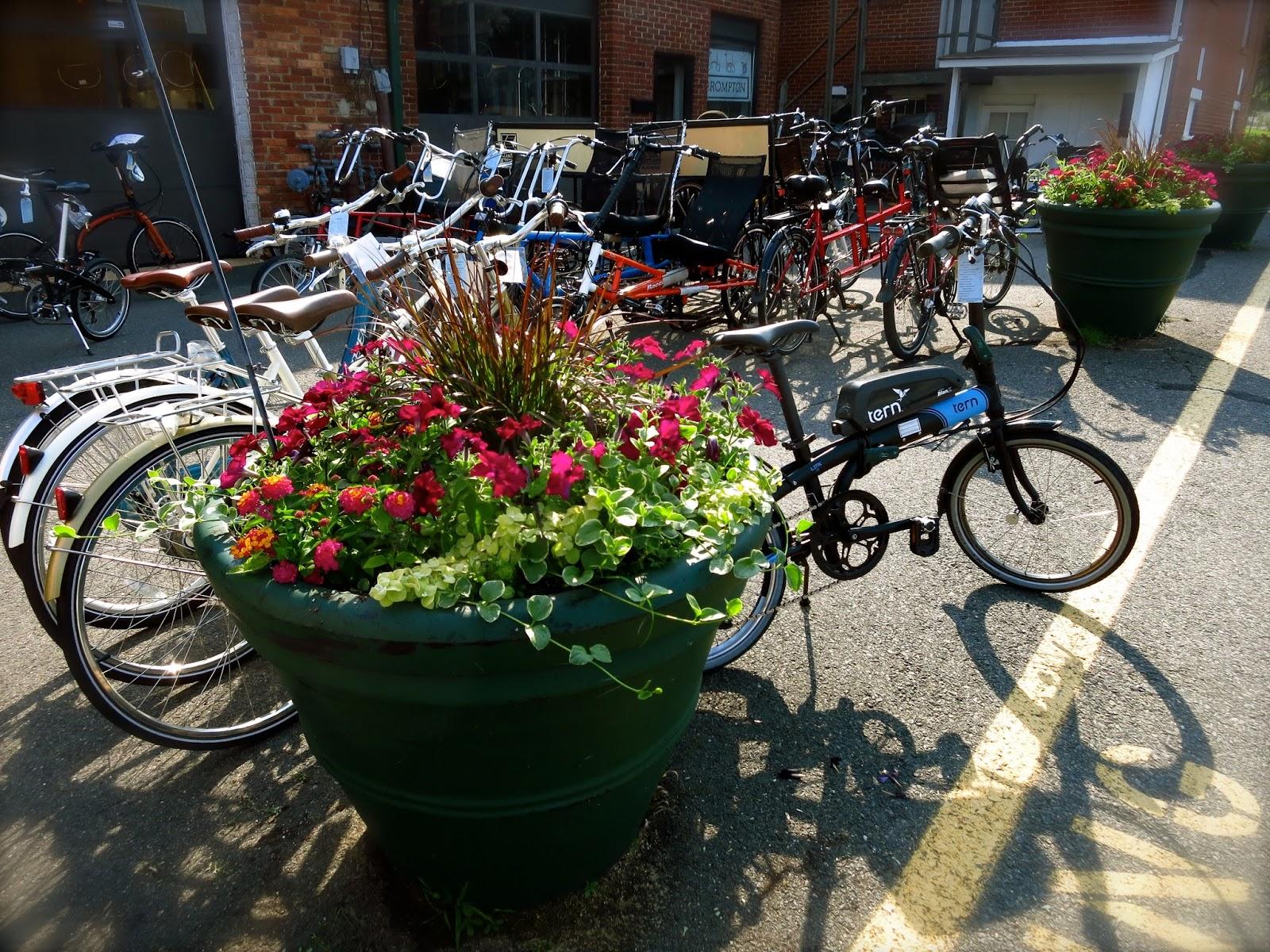 Bikes Vienna Recumbent Bike New Sunday Hours