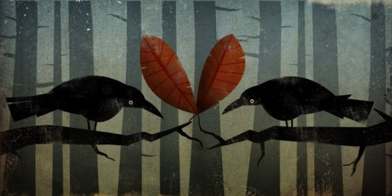 ryan fowler birds