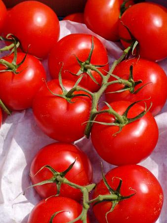 fotoaufnahme wann darf ich denn wieder sorgenfrei tomaten essen. Black Bedroom Furniture Sets. Home Design Ideas