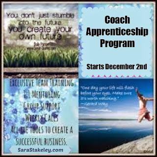 extra income, work from home, Christmas cash, get paid to get fit, Sara Stakeley, personal growth, success, help others\Christmas cash, mentor, guide, business, be your own boss,
