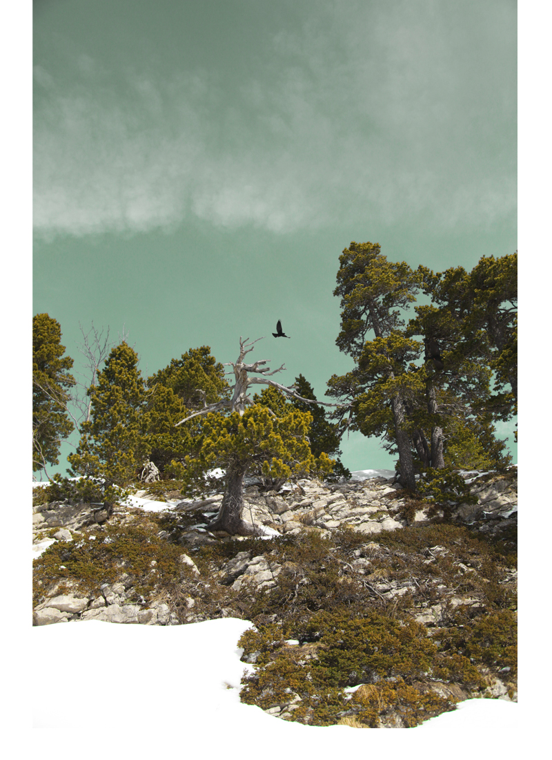 paysage neige vercors