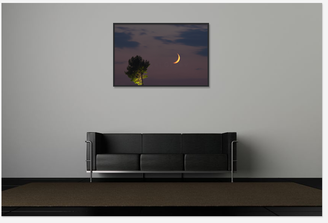 Interior room with art picture print,buy photo print