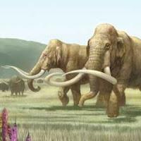 dos mamuts