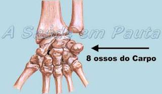 Os Ossos do Carpo são ossos curtos, comprimento, largura e espessura são equivalentes