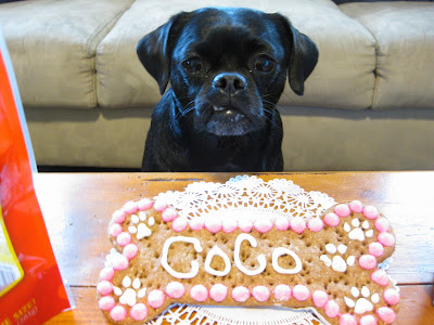 Dog stealing birthday cake - photo#16