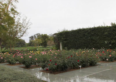 Sunnylands Presidents wives rose garden