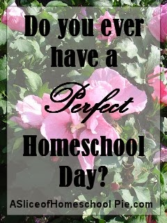 A mother writes about a day she wishes she could carbon copy throughout her children's homeschool journey.  By ASliceOfHomeschoolPie.com