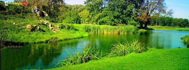Lake In The Middle Of Greenery