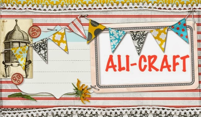 Follow the Ali Craft Blog