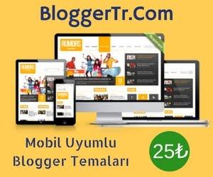 Premium Blogger Temaları