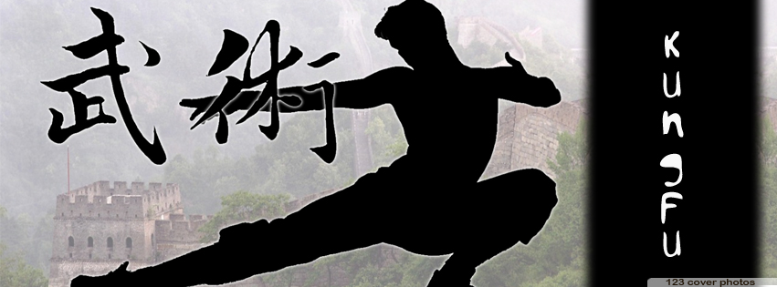Facebook Timeline Covers Martial Arts