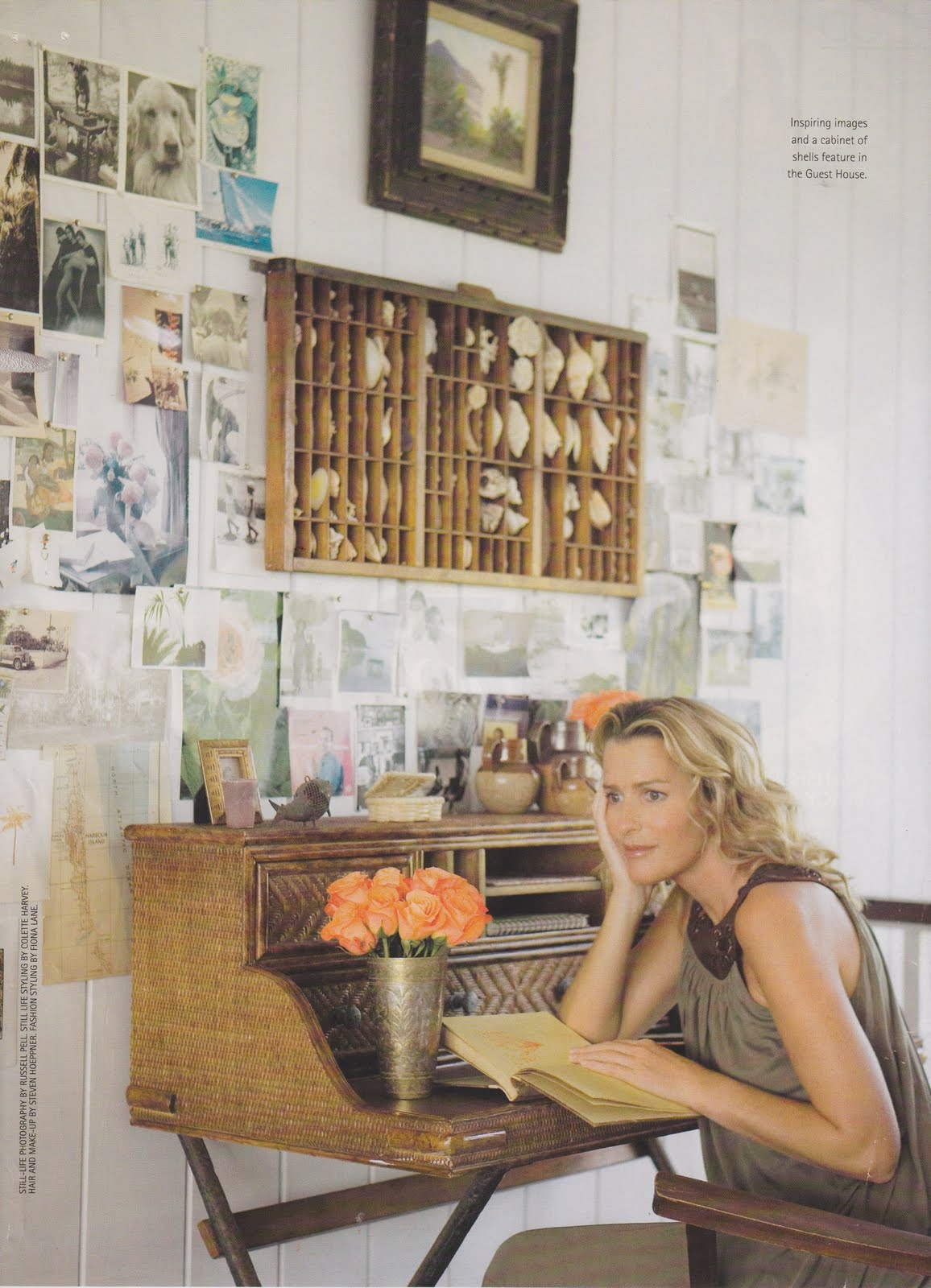 India Hicks Coral On Desk | House Design