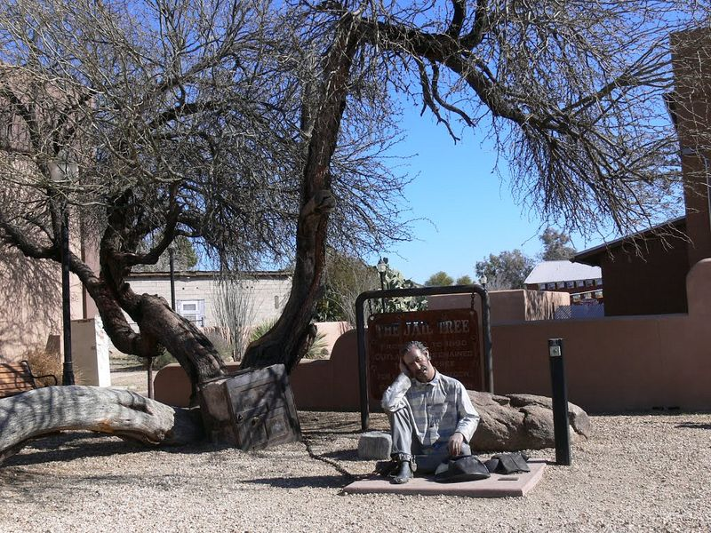 wickenburg-jail-tree-2