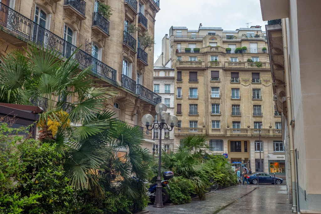 Paris France street with plants trees