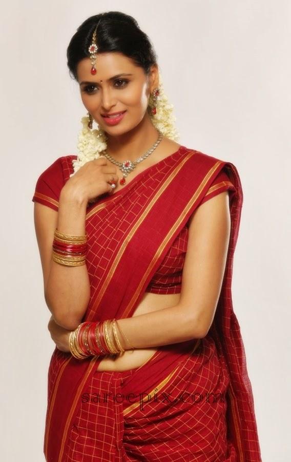Meenakshi-dixit-in-saree-tamil-movie