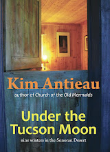Under the Tucson Moon