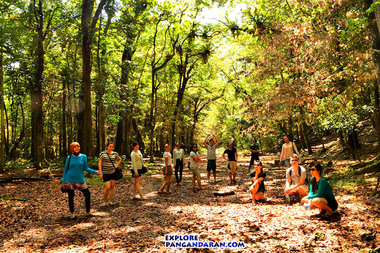 Taman Wisata Alam dan Cagar Alam Pangandaran