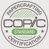 Copic Standard Certification