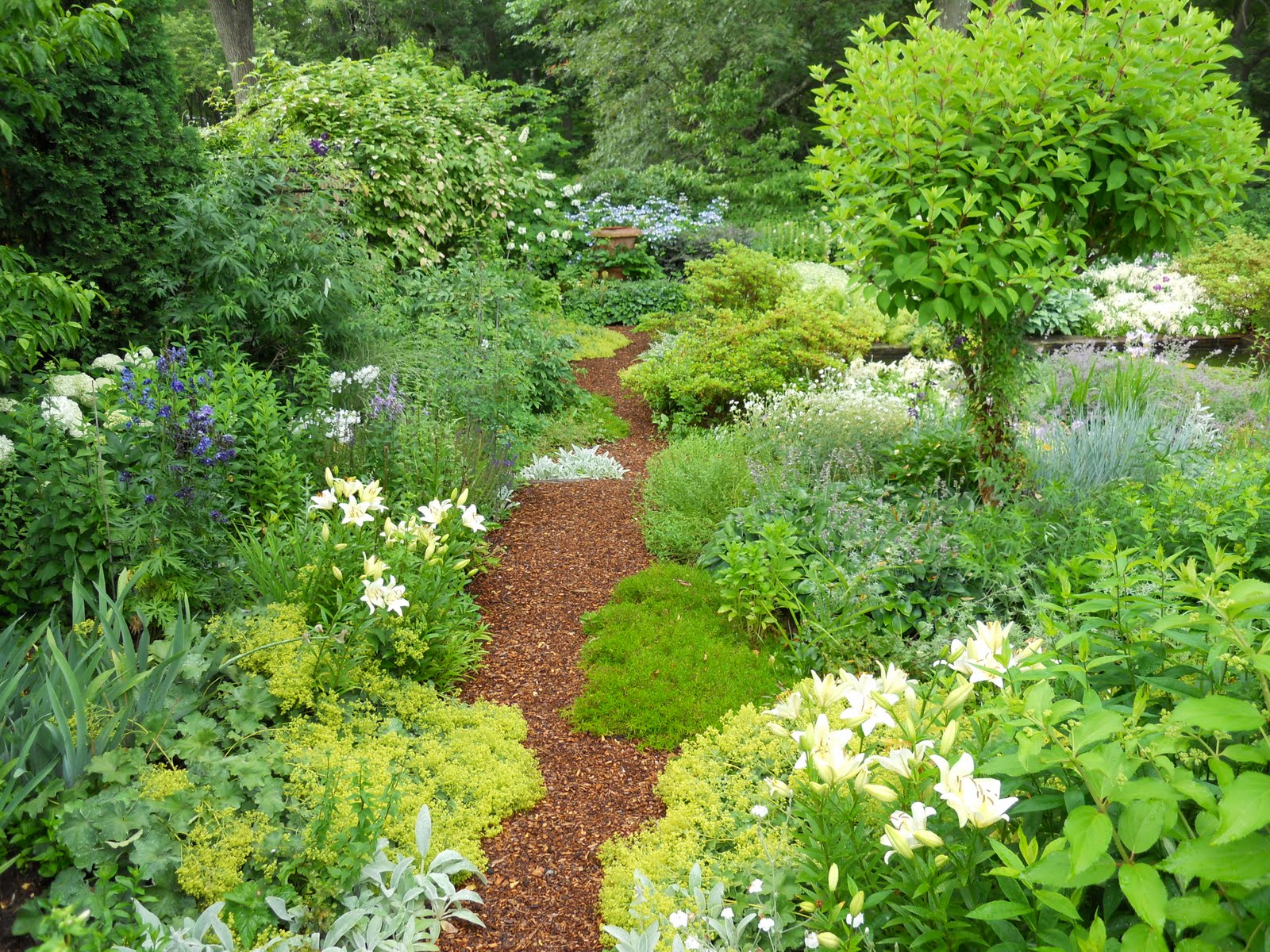 Gardens With Mulch submited images Pic2Fly