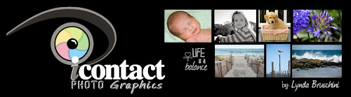 Icontact photo graphics by Lynda Bruschini