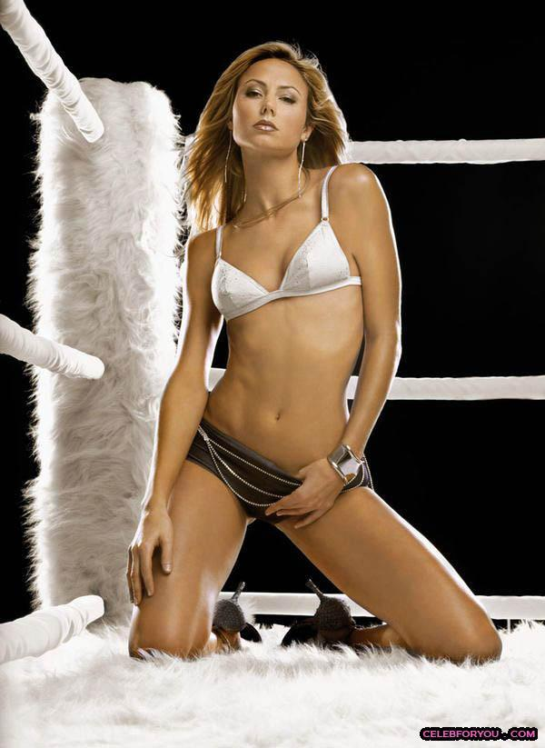 the hottest wwe divas funny ground