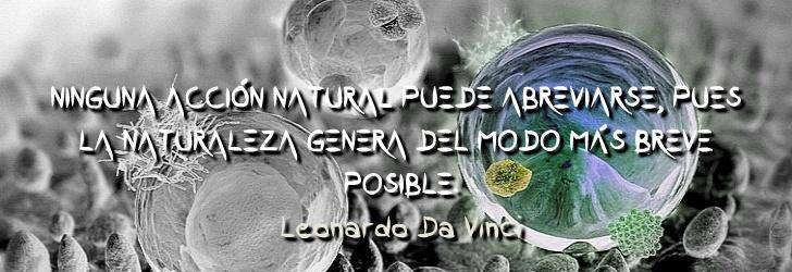 Ninguna acción natural puede abreviarse, pues la naturaleza genera del modo más breve posible.