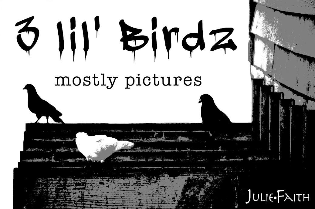 3 lil' birdz