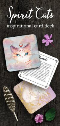 Inspirational Cat Cards