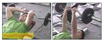 triceps skullcrushers