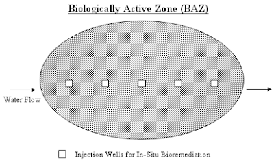 biologically active zone