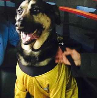 Meet Starbase Charlie!