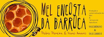 """""""Encosta da Barroca"""""""