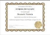 My Award In DailyAwards