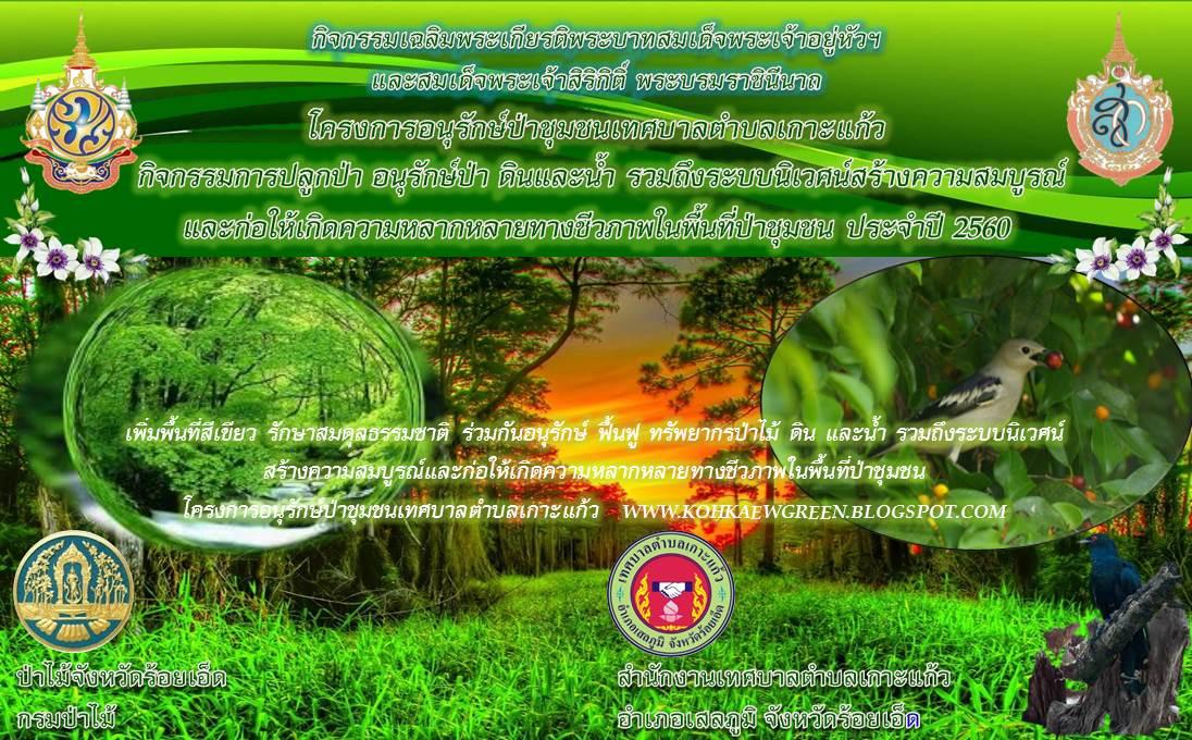 เพิ่มพื้นที่สีเขียว รักษาสมดุลธรรมชาติ