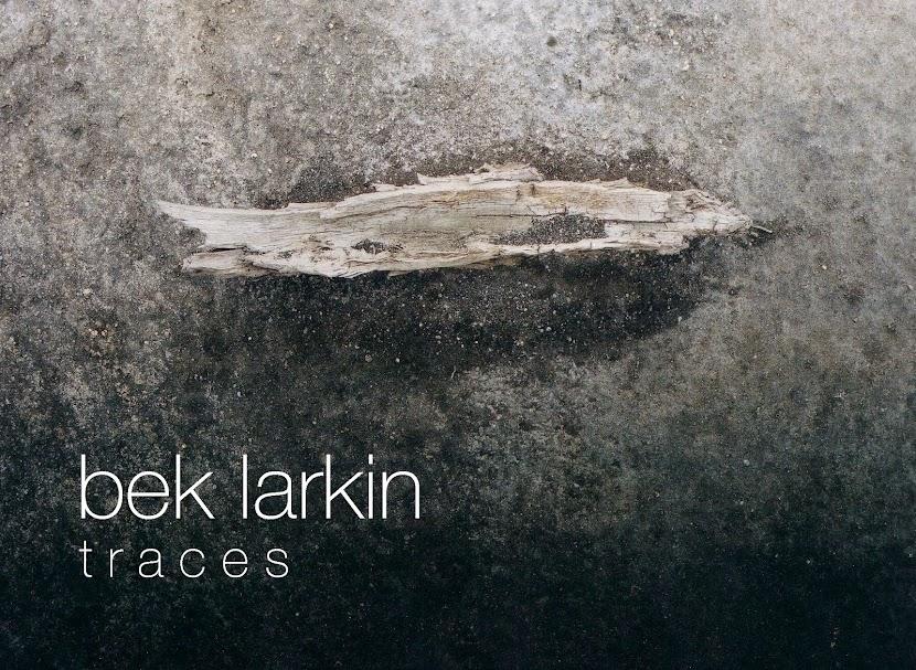 bek larkin traces