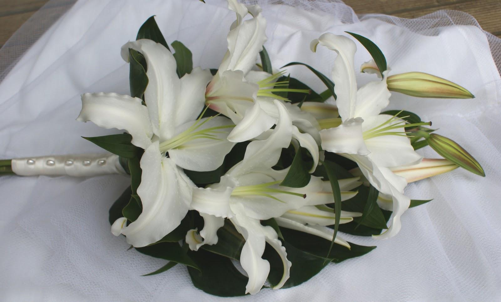 Lily seidler wedding
