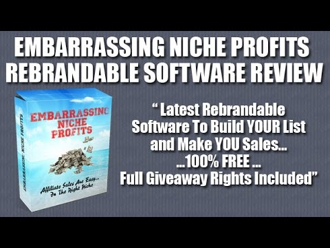 Embarrassing Niche Profits