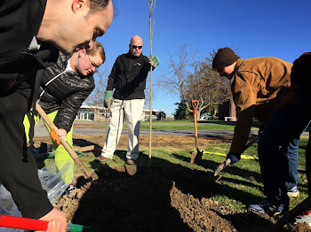 Volunteers Plant Trees at JCC
