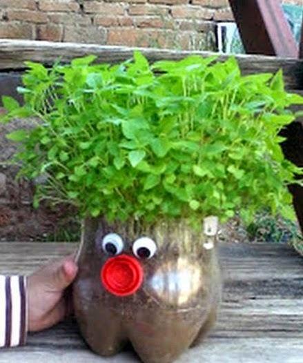 Plantamer realizar una maceta con una botella pl stica for Varias plantas en una maceta