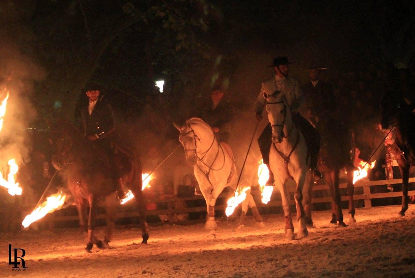 Cont. da Feira do Cavalo