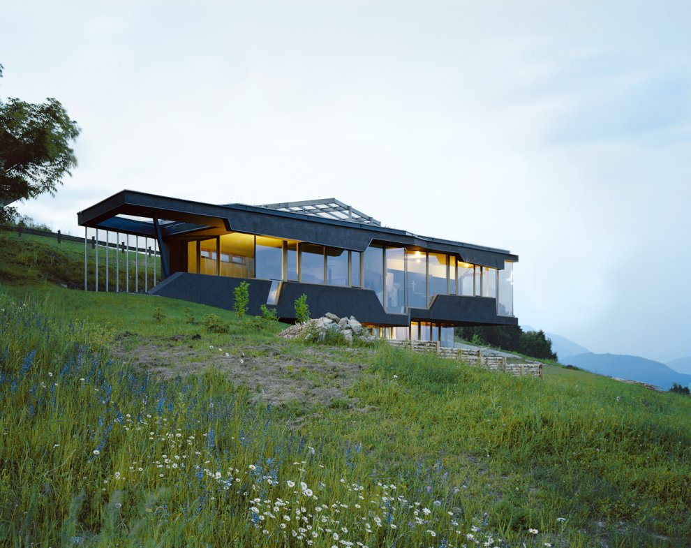 Organic Architecture Embedded House