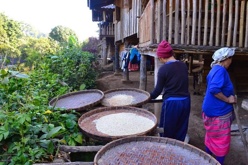 Thailande, Treck, village, Baan Mae Jok, karen, tribu, Mae Taeng